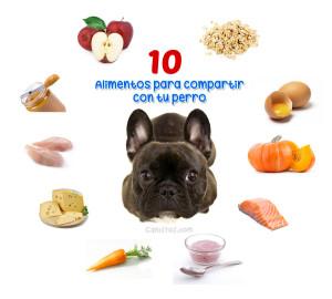 Alimentos-para-compartir-con-tu-perro