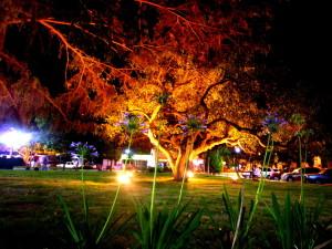Jardines_de_la_Plaza_B.Mitre